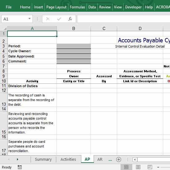 Internal Control of Accounts Payable in Excel.