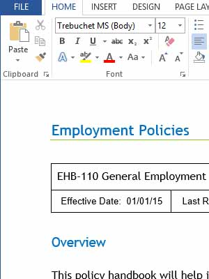 hr sop template - policies and procedures with internal controls copedia