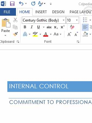 Policies And Procedures With Internal Controls | Copedia